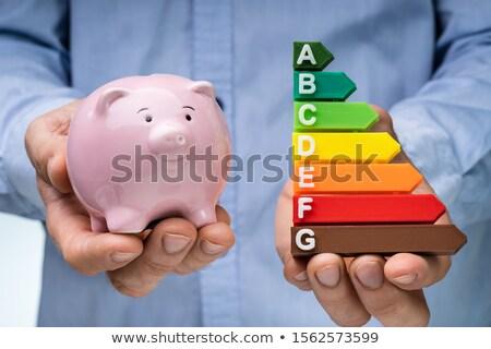 Man's Hand Holding Piggybank And Energy Efficiency Graph Stock photo © AndreyPopov