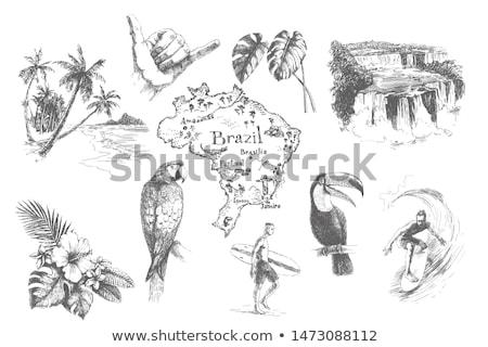 Kézzel rajzolt rajz hippi férfi szakáll gitár Stock fotó © netkov1