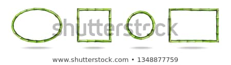 Vector Bamboo Tropical Frame Stock photo © dashadima