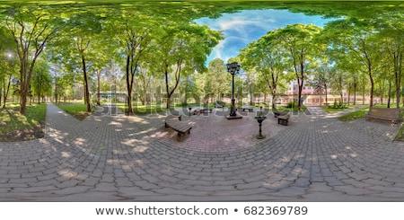 Pedra parque banco hdr folhas grama verde Foto stock © bobkeenan