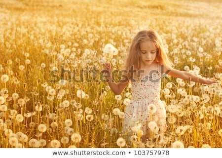 Portret schoonheid meisje paardebloemen jonge mooie vrouw Stockfoto © fotorobs