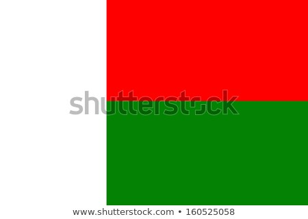 Grunge Flag the Madagascar Stock photo © HypnoCreative