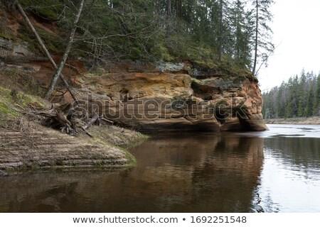 Arenito floresta paisagem tabela azul rocha Foto stock © LianeM