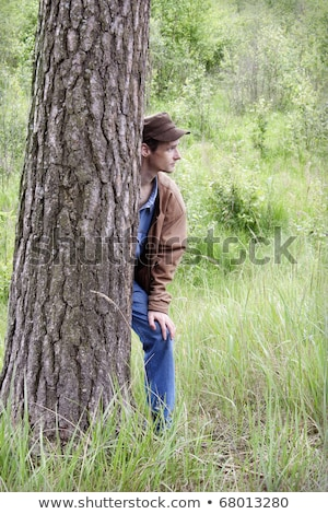 atrás · árvore · grama · floresta · retrato · preto - foto stock © photography33