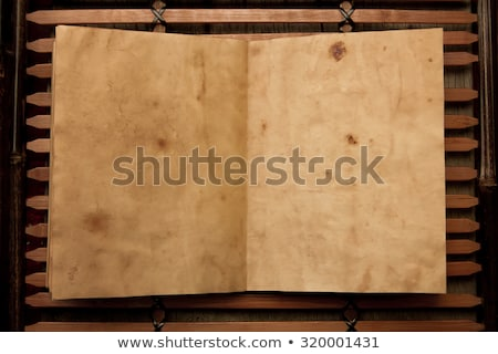antique chinese book page stock photo © devon