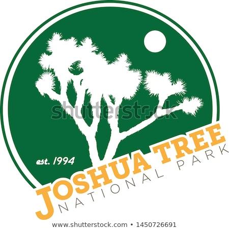 árvore · pôr · do · sol · árvores · colorido · parque · Califórnia - foto stock © pancaketom