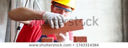 murarz · zajęty · pracy · domu · ściany · przemysłu - zdjęcia stock © photography33
