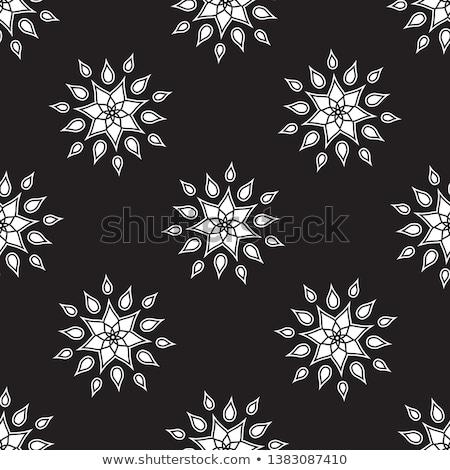 snow flake medallion 7 Stock photo © robertosch