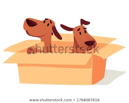 Perro regalos nadie pueden Foto stock © karelin721