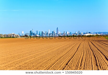 view over acres to the Skyline of Frankfurt Stock photo © meinzahn