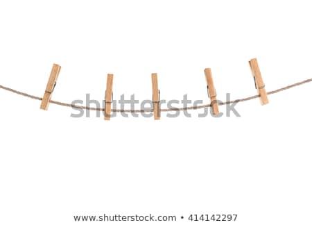 Kötél izolált stúdiófelvétel fa kábel fotó Stock fotó © deyangeorgiev