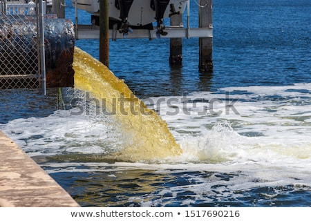 drain sewage pollution stock photo © tlorna