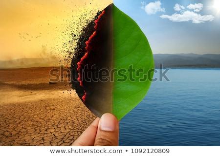 окружающий · катастрофа · пост · апокалиптический · оставшийся · в · живых · противогаз - Сток-фото © stokkete
