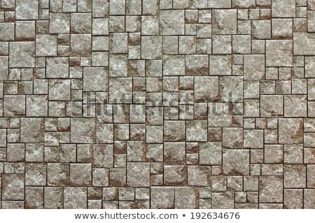 Pavement. Seamless Tileable Texture. Stock photo © tashatuvango