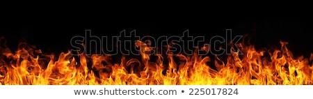 Tűz láng fekete keret fa természet Stock fotó © dotshock