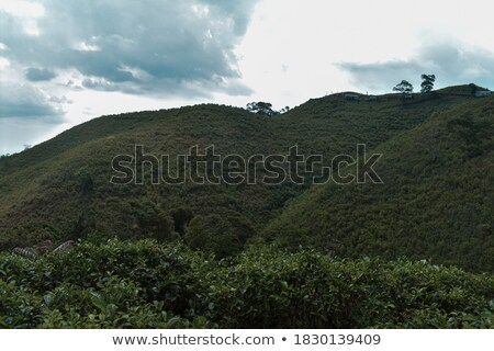 aerial of beautiful mountain ridge over greece Stock photo © meinzahn