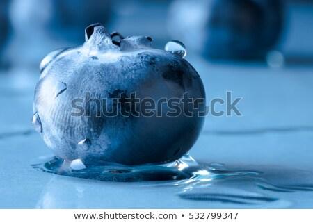 свежие черника Focus Top слой Ягоды Сток-фото © ambientideas