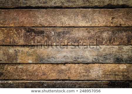old section on oak wood beam Stock photo © taviphoto
