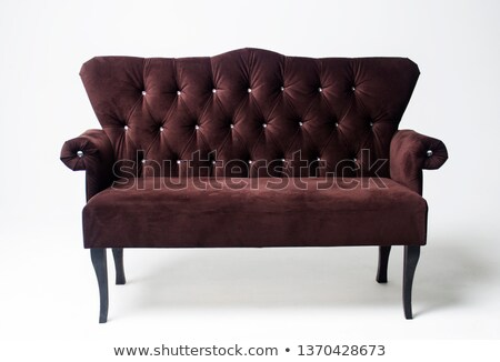 Vintage velvet brown color armchair with carved legs Stock photo © amok