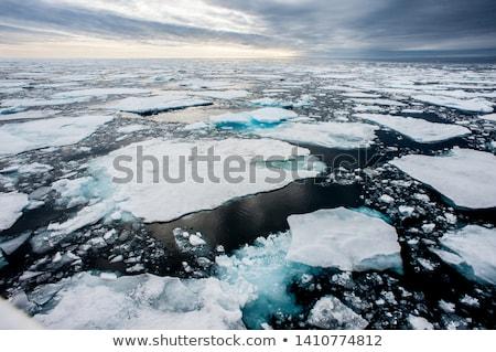 Sarki jég végtelenített stilizált illusztráció északi Stock fotó © tracer