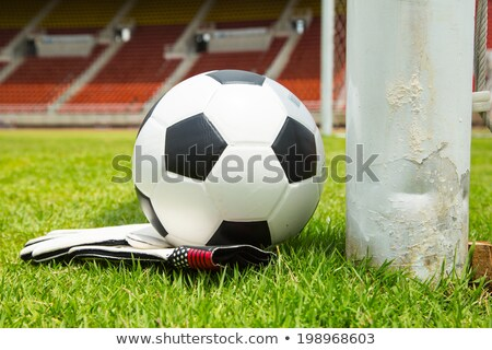 Soccer ball and goldkeeper gloves set for shoot   stock photo © hin255