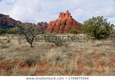 Dzwon rock Arizona popularny atrakcją turystyczną na północ Zdjęcia stock © tang90246