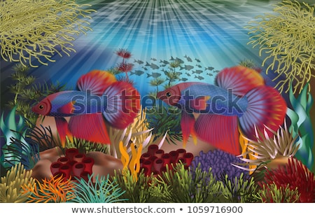 Underwater banners with red tropical fish, vector illustration Stock photo © carodi