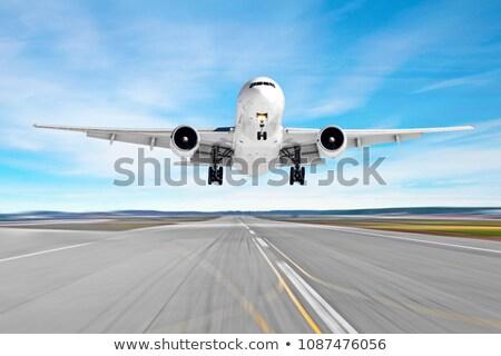 aterrissagem · gaivota · pássaro · areia · voar · animal - foto stock © ssuaphoto