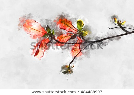 new germ in the old branch stock photo © peredniankina