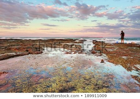 naplemente · trópusi · víz · éjszaka · kő · fekete - stock fotó © lovleah
