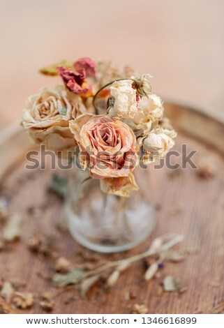 Faded rose on wooden background Stock photo © Valeriy