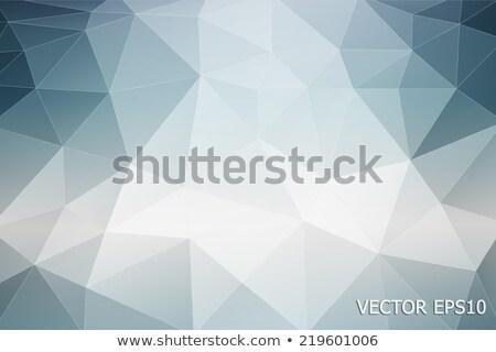 Illustrazione abstract frattale geometrica pattern tecnologia Foto d'archivio © yurkina