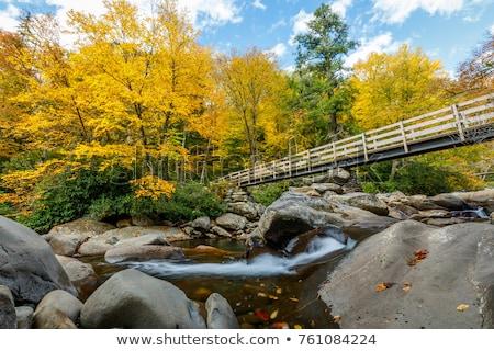 cheminée · montagne · magnifique · smoky · montagnes · forêt - photo stock © alex_grichenko