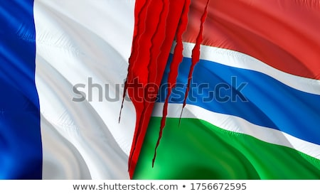 France and Gambia Flags Stock photo © Istanbul2009
