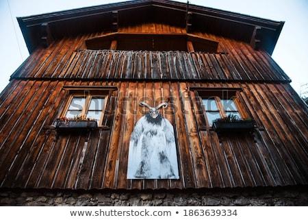 gyönyörű · kilátás · Alpok · tipikus · hegy · házak - stock fotó © meinzahn