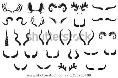Ostry ilustracja tle sztuki tropikalnych Zdjęcia stock © bluering
