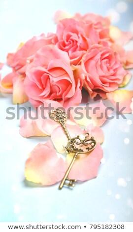 key with rose petals stock photo © artjazz