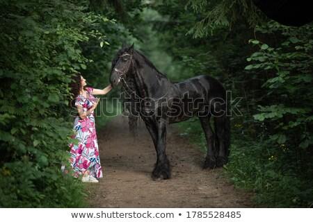 hermosa · posando · caballo · jóvenes · dama - foto stock © konradbak