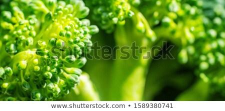 Macro shot broccoli selectieve aandacht voedsel Stockfoto © Lana_M