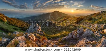 осень · гор · Словакия · трава · лес · пейзаж - Сток-фото © mmarcol