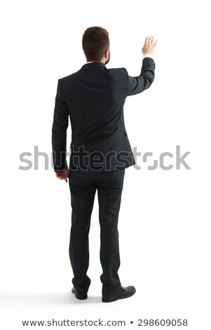 back view of a businessman pointing finger stock photo © feedough