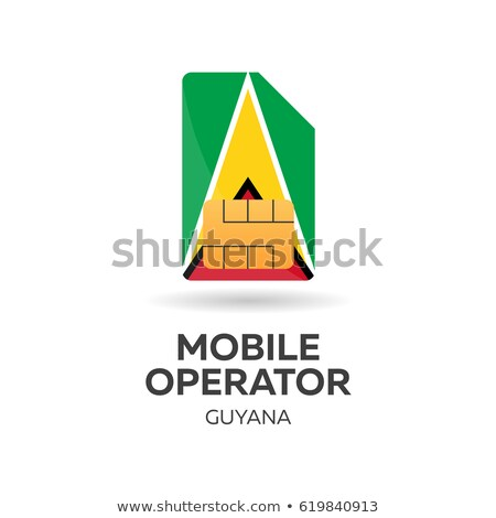 guyana mobile operator sim card with flag vector illustration stock photo © leo_edition