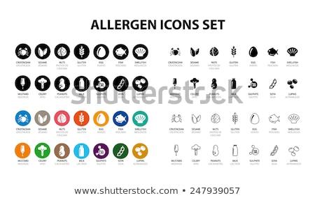 Voedsel allergie iconen 14 eu Stockfoto © Krisdog