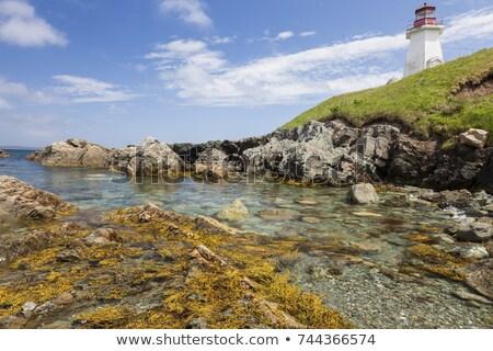 Deniz feneri plaj Bina manzara ışık beyaz Stok fotoğraf © benkrut