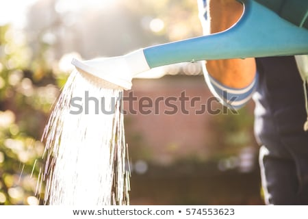 Midsection of gardener watering at garden Stock photo © wavebreak_media