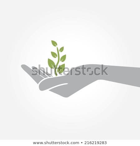 Woman holding handful of seeds Stock photo © IS2