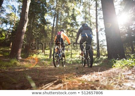 Casal mountain bike animado floresta Foto stock © wavebreak_media