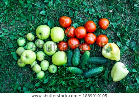 Fresh organic pears lying on the grass . Top view stock photo © Virgin