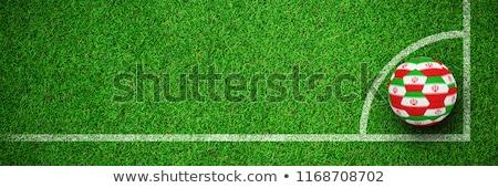 Stock fotó: Futball · Irán · színek · zöld · textúra · futball