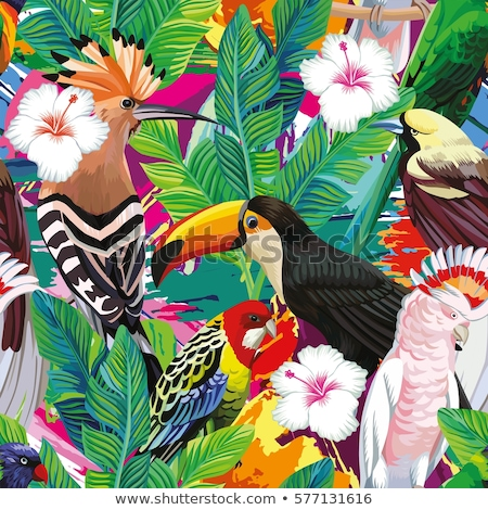 птица · рай · цветок · пальма · лист · весны - Сток-фото © articular